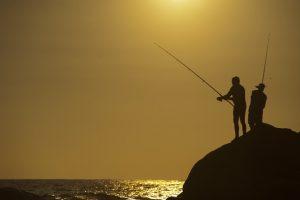釣りバカ日誌2 視聴率と感想